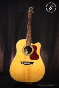 Réglage Guitare Dean St Augustine par Speach Art
